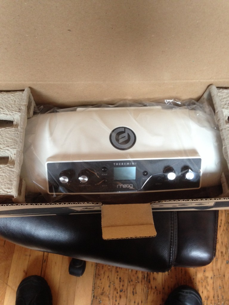 Moog Theremini unbox